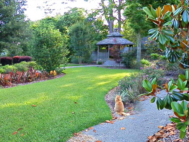 Garden Path Magnolias near Providence Canyon State Park