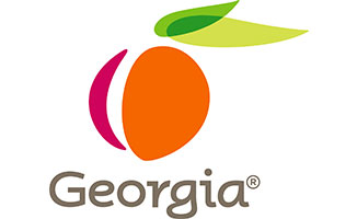 Georgia Logo close to Jimmy Carter National Historic Site