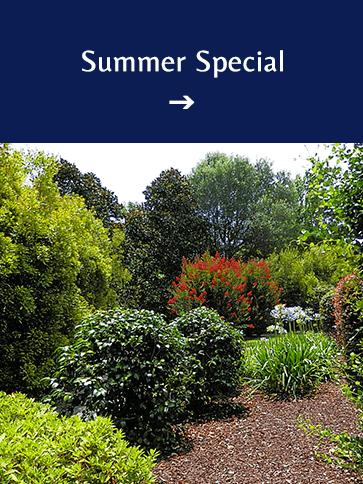 Summer Special | Americus Garden Inn BB, near Andersonville Historic Site