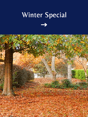 Winter Special | Americus Garden Inn BB, near Andersonville Historic Site